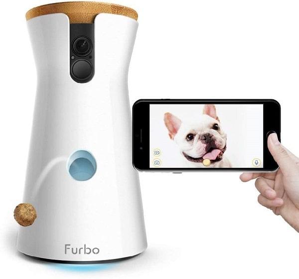 Cámara Furbo lanzamiento de premios para perros