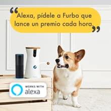 Alexa funciona con la cámara de Furbo para perros