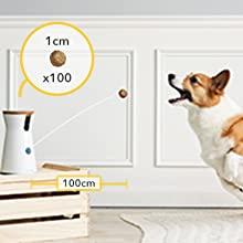 Lanzamiento golosinas Furbo cámara perro