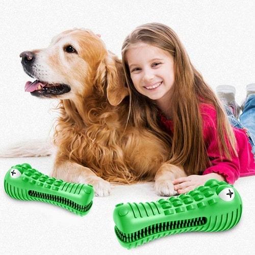 Juguete para perros con sonido