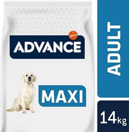 Alimento seco Advance Adult Maxi para perros adultos