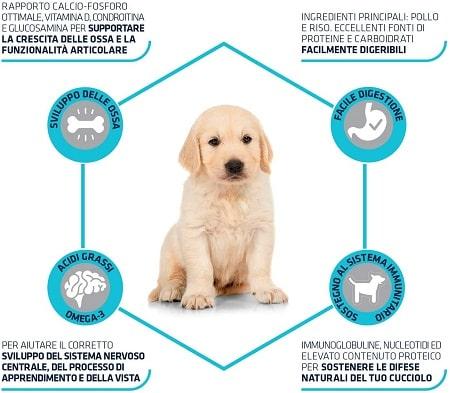 Advance Active Defense Puppy Maxi
