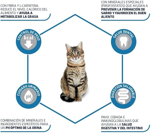 Alimento seco para gatos Advance Active Defense Sterilized Adult