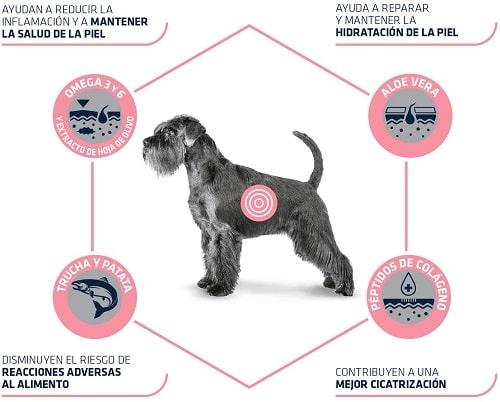 Advance Veterinary Diets Atopic con trucha para perros