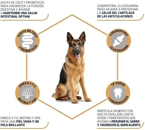 Pienso para perro Pastor Alemán Advance Active Defense adulto