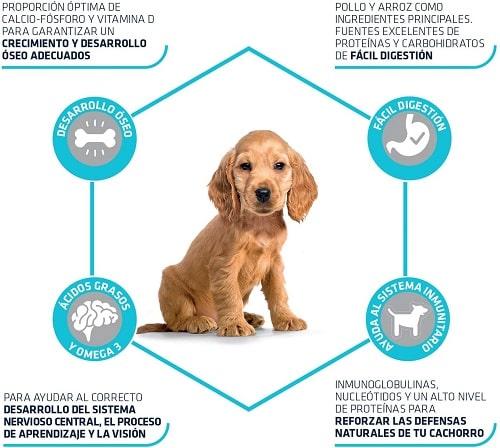 Pienso para perro cachorro Advance Active Defense Puppy Medium