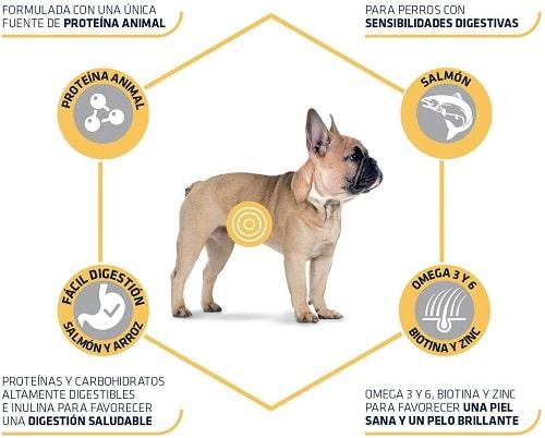 Pienso para perro Advance Active Defense Sensitive Mini