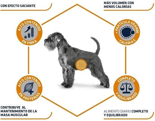 Advance Veterinary Diets Weight Balance Medium Maxi para perros