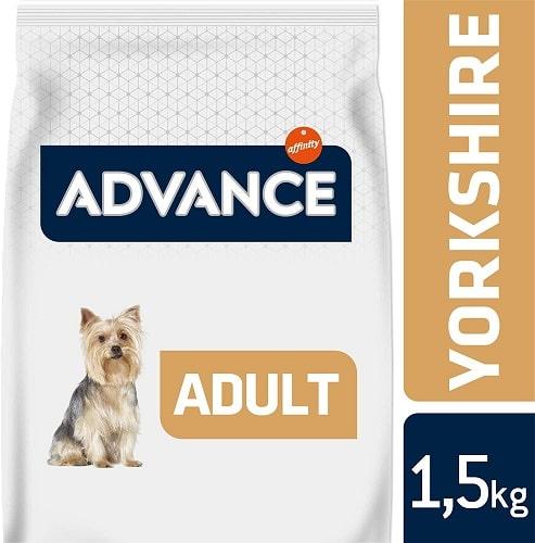 Alimento seco para perros Advance Active Defense Yorkshire Adult