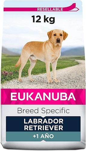Pienso para perros Eukanuba Breed Specific Labrador Retriever