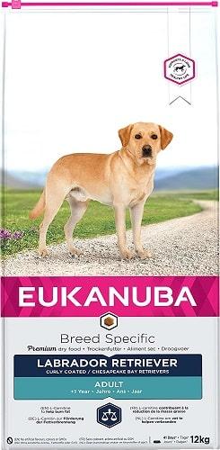 Alimento seco para perros Eukanuba Breed Specific Labrador Retriever