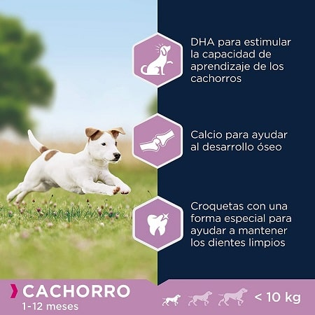 Pienso para perros Eukanuba cachorro hasta 12 meses