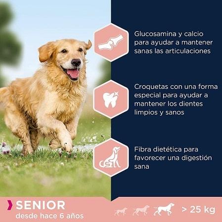 Pienso para perros Eukanuba senior razas grandes desde los 6 años