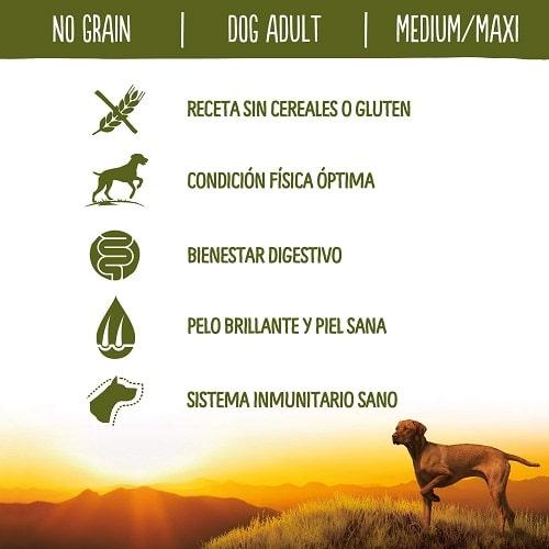 Receta sin cereales o gluten para perros adultos True Instinct No Grain con pollo