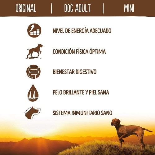 Nivel de energía adecuado para perros True Instinct Original Perro Mini