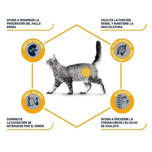 Advance Veterinary Diets Renal gatos