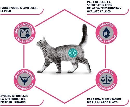 Advance Veterinary Diets Urinary Sterilized Low Calorie para gatos