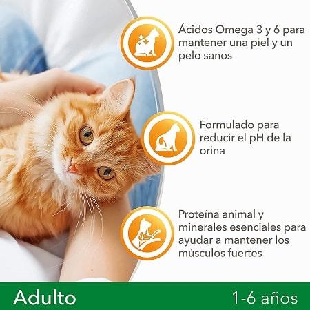 IAMS For Vitality Gato Adulto con Pollo