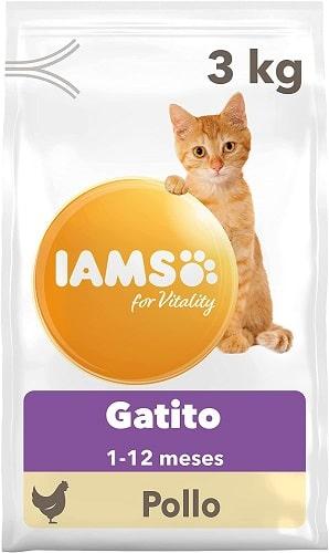 Pienso para gatito kitten IAMS con pollo