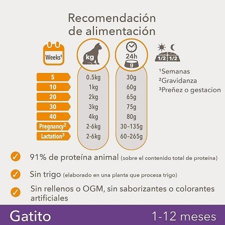 Recomendación de alimentación Gatito Kitten IAMS