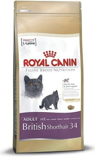 Royal Canin para gatos Feline Breed Nutrition British Shorthair 34